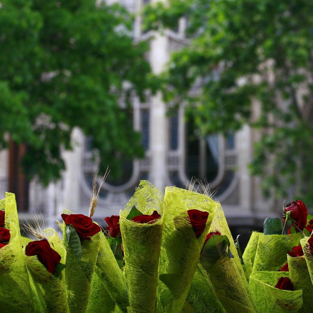 Diada de Sant Jordi | Barcelona Shopping Line