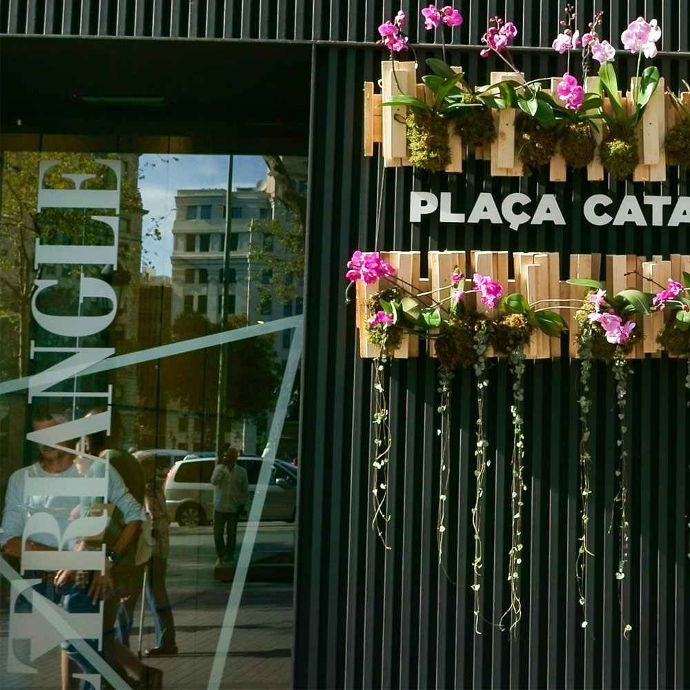 Festes del Roser on Barcelona's Rambla | Barcelona Shopping City