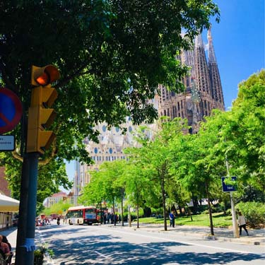 Eix Comercial Sagrada Familia | Barcelona Shopping City | Tienda
